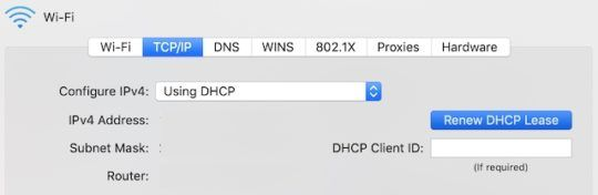 DHCP Kiralama düğmesini yenile