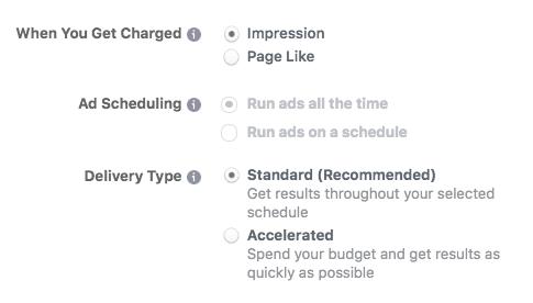 Bir Facebook reklamı oluştururken gelişmiş bütçe seçenekleri