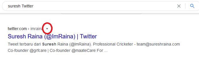 Silinmiş Tweetleri Kurtarmak İçin Google Önbelleğini Kullanın